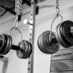 Ganzkörper Trainingplan als Fundament